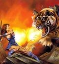 JB 1992 fireballs