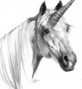 JB sketch 2000 unicorn