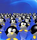 pinguinz