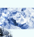 digital art   q ice flowers