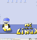 me and my linux