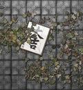 leavesfear3