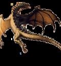 dragonair5wa