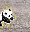 panda 1680