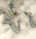Three White dragons