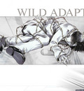 wildadapter 1