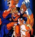 DBZ   Vegeto and Gogeta