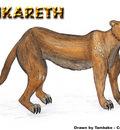 Ankareth