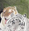 TigersS