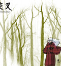 inuyasha wallpaper   forest
