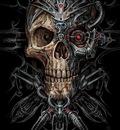 Biomx skull