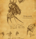 stalker concept