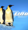 Linux frf 1024x768