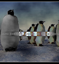 linux NeverBeAlone 1280x1024
