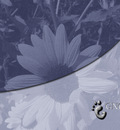 GNOME NoisyFlower 1280x1024