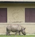 GNOME Rhino