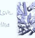 wp love hina