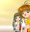 wp sakura