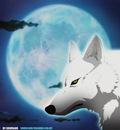 wolfsrain 10