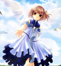 angel rabbit