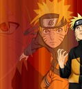 Naruto Shippuuden (9)