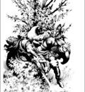 stephen e fabian sword woman II