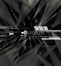 shards1