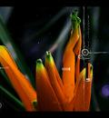 beunique1