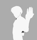 rock lee   ipod   gray
