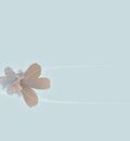 wallflowersblue